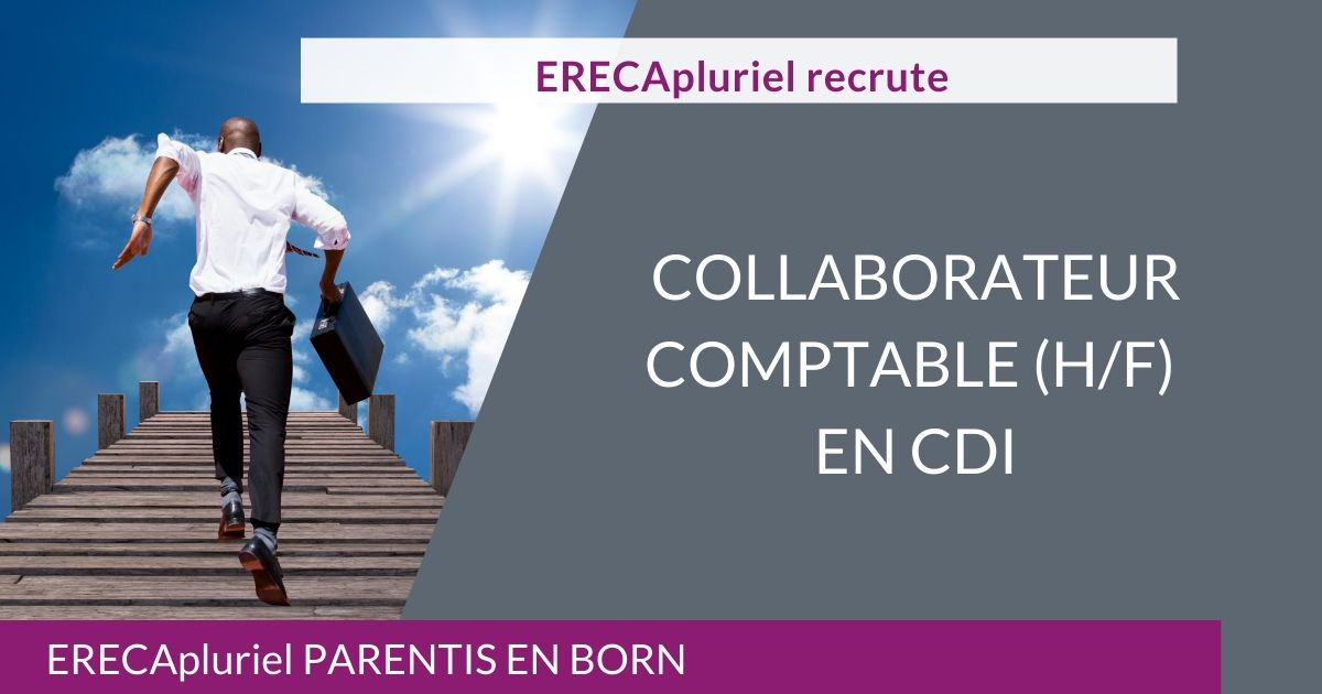 Collaborateur Comptable (H/F) CDI – Agence de Parentis en Born