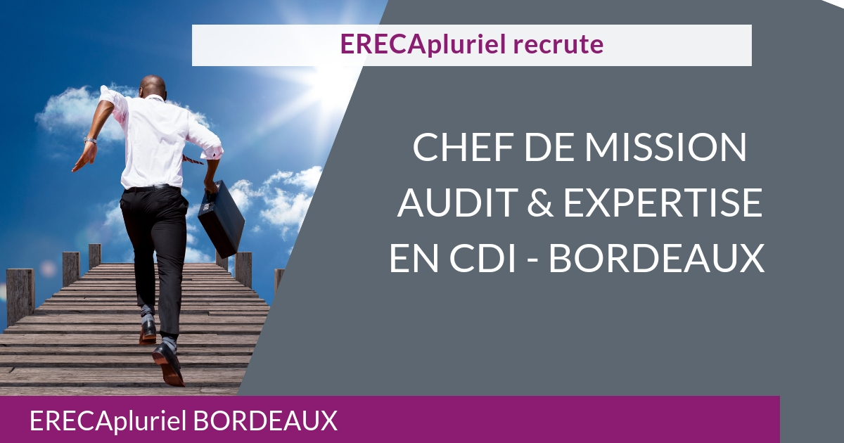 Chef de mission audit et expertise – CDI