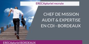 POURVU -Chef de mission audit et expertise - CDI
